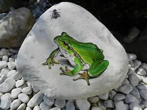Steine Vor Der Haustür : frosch mit fliege auf stein etwas anspruchsvoller f r ~ A.2002-acura-tl-radio.info Haus und Dekorationen