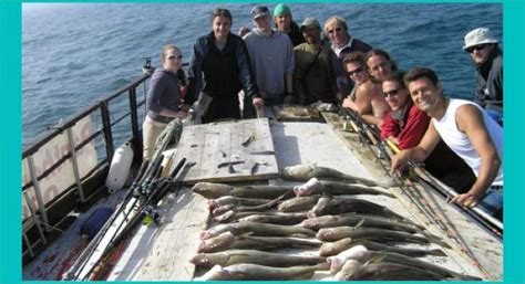 Fishing Boat Hire Eastbourne by Sea Angling Sea Fishing Charter Fishing Fishing Trips
