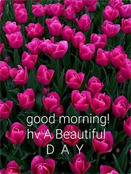 Best 25 ideas about good morning greetings find what youll love good morning greetings m4hsunfo