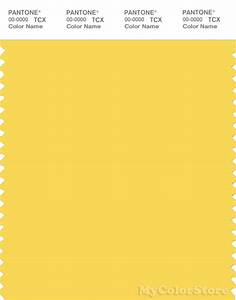 PANTONE SMART 13-0756 TCX Color Swatch Card | Pantone ...
