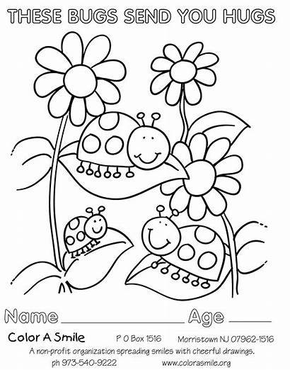 Scout Daisy Petal Rose Coloring Pages Daisies