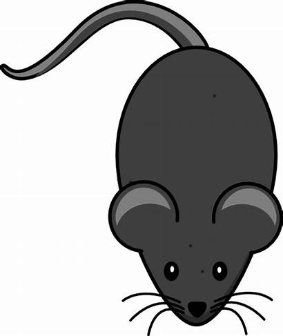 Mouse Clip Tail Grey Cliparts Clipart Clker