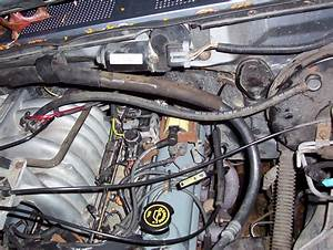 Help Need With Hoses On 351 Efi - 80-96 Ford Bronco Tech Support