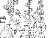 Coloring Hollyhocks Pages Adult Hollyhock Fairy Drawings Graphics Template 2kb 1086 2484 sketch template