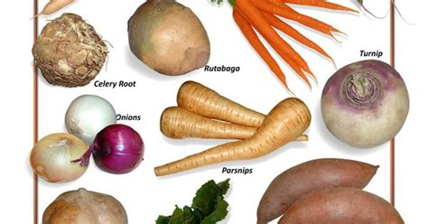 Identifying Root Vegetables  View Thousands Of Amazing