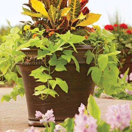 better homes and gardens planters better homes and gardens monteverde outdoor planter