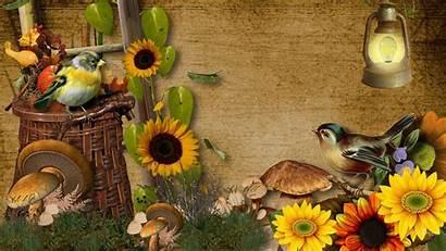 Harvest Fall Wallpapers Desktop Beginning Backgrounds Widescreen