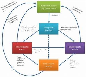 Environmental Health