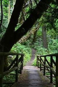 Treillis Soudé Point P : olympia public and parks on pinterest ~ Dailycaller-alerts.com Idées de Décoration