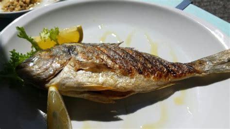 le poisson du jour picture of old station olbia olbia