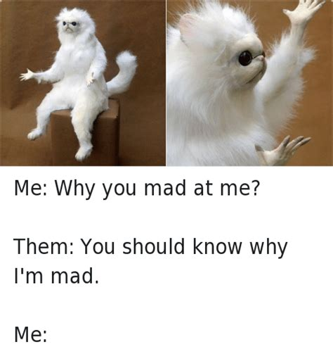 Mad At You Meme - me why you mad at me them you should know why i m mad me funny meme on sizzle