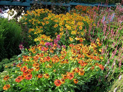 Förderverein Botanischer Garten Braunschweig by Bildergalerie Mit Fotos Vom Botanischen Garten In Hof