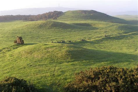 filebronkham hill barrow cemetery dorsetjpg wikimedia