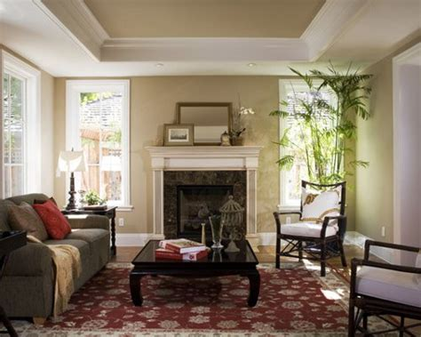 Houzz Living Room Ceiling Designs by Tray Ceiling Design Home Design Ideas Pictures Remodel