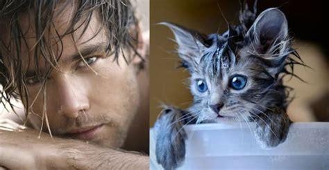 shirtless model poses imitated  cats  seductive