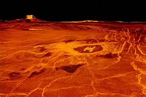 Venus could have been habitable while life evolved on ...