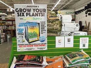 With Marijuana Legal In Mass., Hydroponic Equipment Stores ...