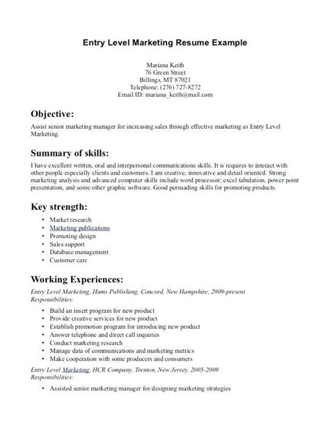 Professional Resume Layout Exles by Resume Templates Beginner Beginner Resume