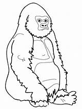 Gorilla Coloring Pages Print sketch template