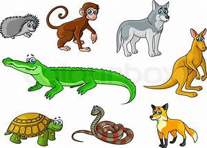 Cartoon forest and jungle animals characters with cute