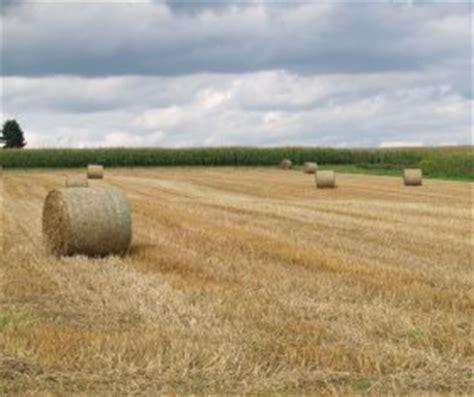 ackerland kaufen rheinland pfalz landwirtschaftliche bodenpreise weiter gestiegen proplanta de