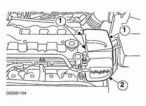 2003 Ford Focus Serpentine Belt Routing And Timing Belt