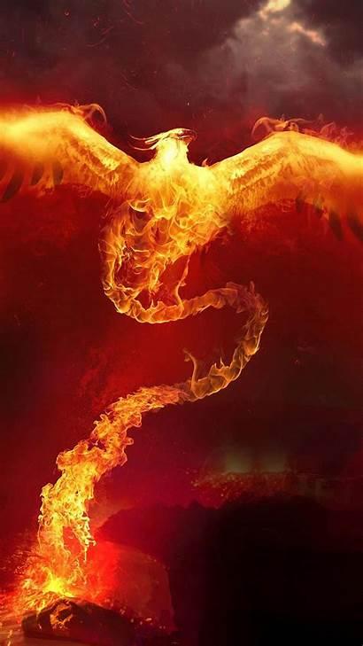 Fire Phoenix Iphone Plus Pro Wall Max
