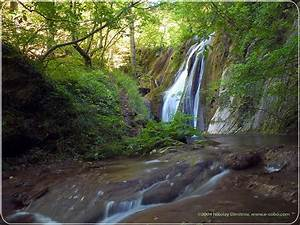 Waterfall in Forest Scenery Background | Scenery Backgrounds