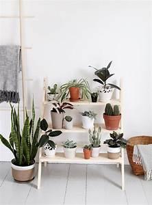 Etagere De Jardin Pour Plantes : fabriquer une tag re pour vos plantes shake my blog ~ Teatrodelosmanantiales.com Idées de Décoration