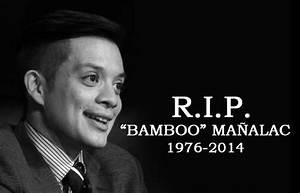 Bamboo Manalac Wallpaper