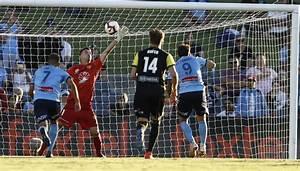 A-League: Sydney FC scrape through to beat Phoenix | Newshub
