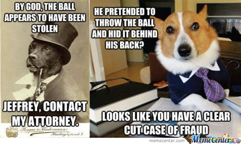 lawyer dog memes  collection  funny lawyer dog pictures