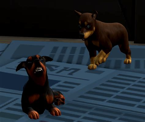 sex with pets bestiality and pets woohoo mod page 4 request and find the sims 4 loverslab