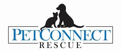 Rescue Dog Cat Adopt Paw Pet Shelter