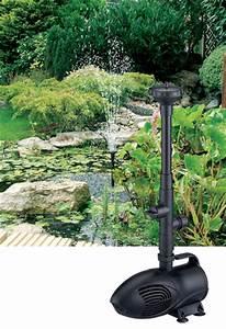 Piranha Fountain Pumps