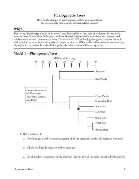 constructing a phylogenetic tree worksheet worksheets for