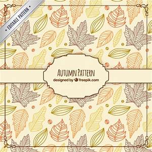 Hand drawn autumn leaves pattern Vector | Free Download