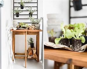 Welche Pflanzen Für Balkon : welche balkonpflanzen m gen es sonnig welche lieben den ~ Michelbontemps.com Haus und Dekorationen