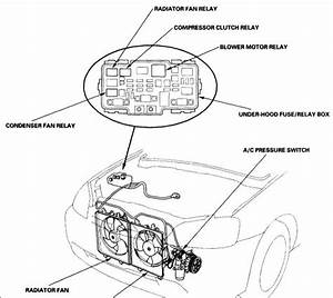Schematics And Diagrams  2001 Honda Civic A  C Compressor Relay
