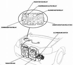 Schematics And Diagrams  2001 Honda Civic A  C Compressor Relay