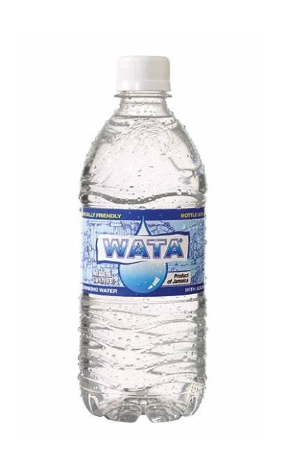 Wata Bottle Wisynco