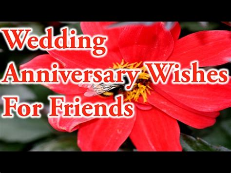 wedding anniversary wishes  friendslove  quotes youtube