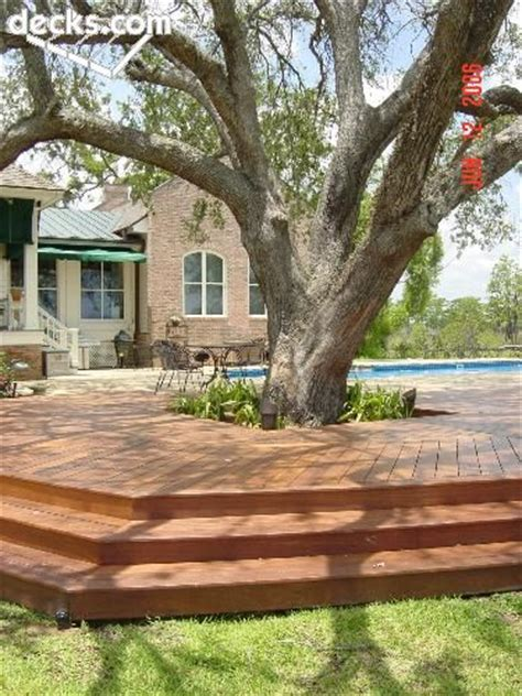 best 25 deck around trees ideas on pinterest tree deck tree seat and love realty
