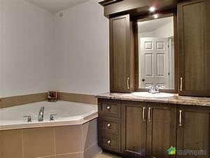 Armoire Salle De Bain : armoire salle de bain usage a vendre ~ Teatrodelosmanantiales.com Idées de Décoration