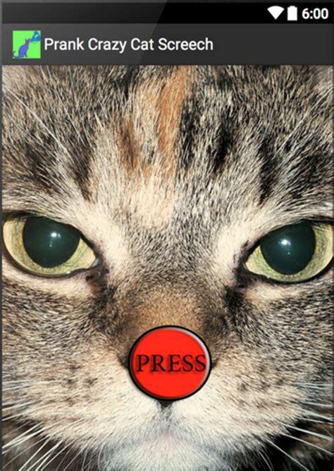 Скачать игру на телефон андроид инди кот