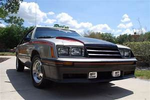 1979 Ford Mustang Pace Car 2.3L Turbo -Original Paint Survivor BARN FIND for sale: photos ...