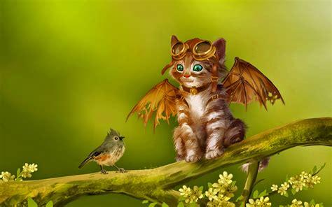 fantasy, bird, cute, cat :: Wallpapers
