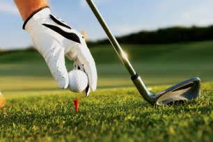 party program template home southern golf course farmington mn