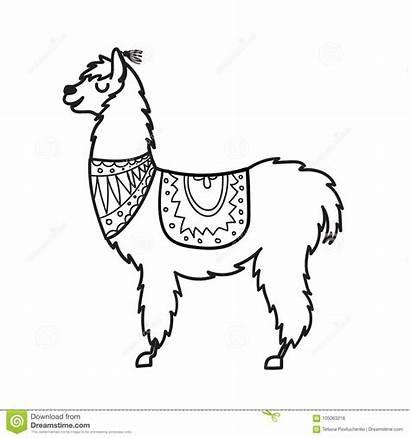 Vector Llama Lama Outline Cartoon Peru South