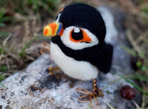 cute baby puffins www pixshark com images galleries